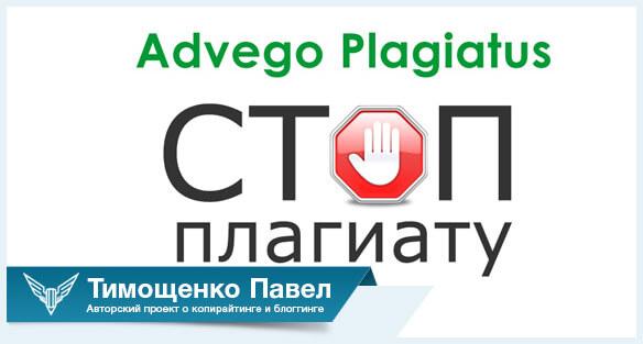 advego plagiatus pavel timoshchenko