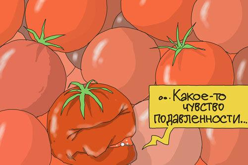 Помятые помидоры