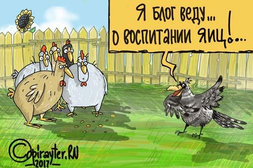Воспитание яиц - карикатура